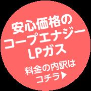 栃木県内の平均ガス料金より安い